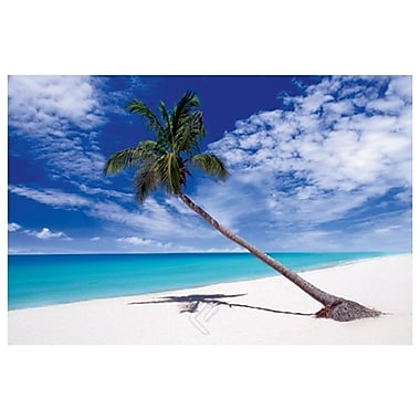 Tropical Leaning Palm Tree, Stretched Canvas, 24