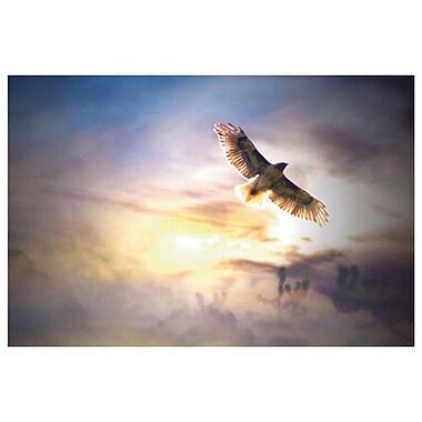 Freebird de Laird, toile, 24 x 36 po