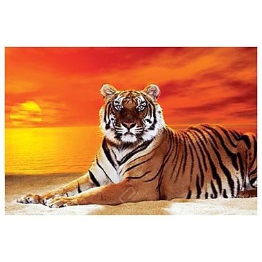 Tigre I, toile tendue, 24 x 36 po
