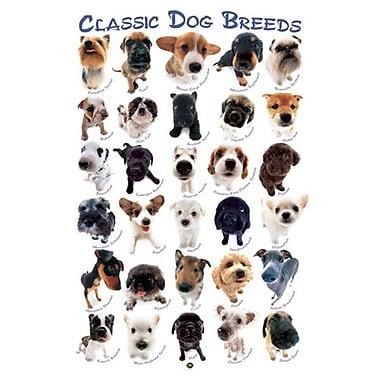 Dog Breeds by HanaDeka, Canvas, 24