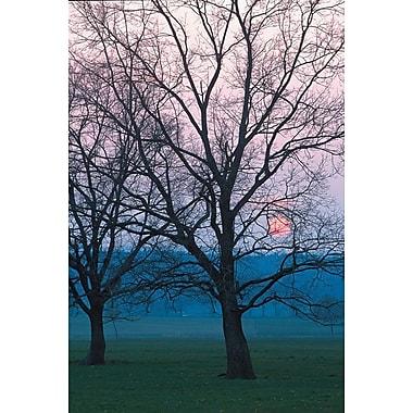 Coucher de soleil de novembre, toile tendue, 24 x 36 po