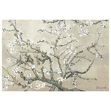 Tan Almond Branches1 by Van Gogh, Canvas, 24