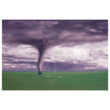 Tornado & Lightning on Field, Stretched Canvas, 24