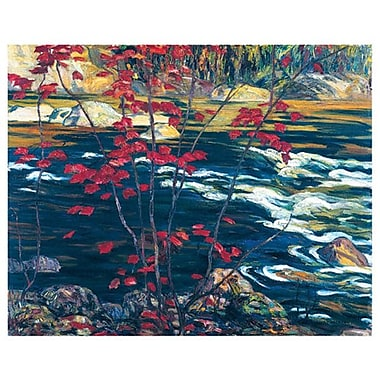 Jackson - Red Maple by Jackson, Canvas, 24