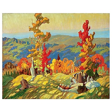 Autumn Northland de Carmichael, toile, 24 x 36 po