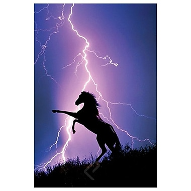 Lightning & Silhouette of Horse, Stretched Canvas, 24