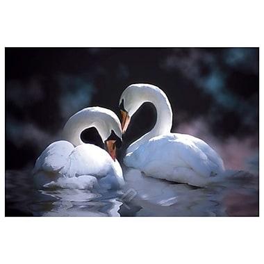 Swan de Laird, toile, 24 x 36 po