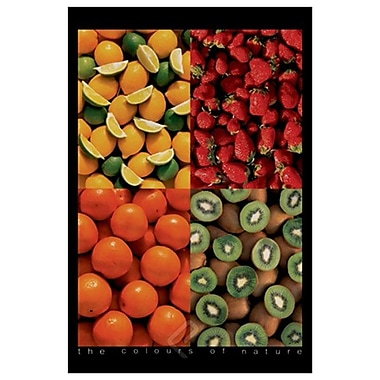 Fruits Colours of Nature, Stretched Canvas, 24