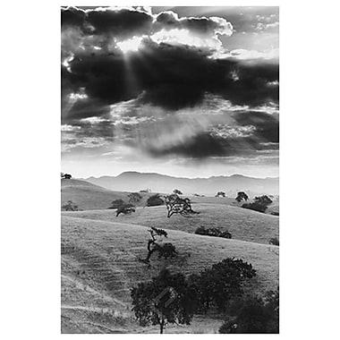 Los Olivo, Californie, toile tendue, 24 x 36 po