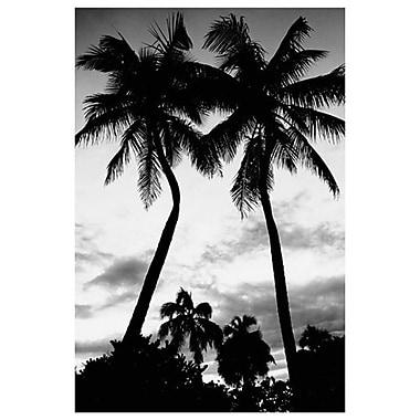 Silhouettes de palmiers – Floride, toile tendue, 24 x 36 po