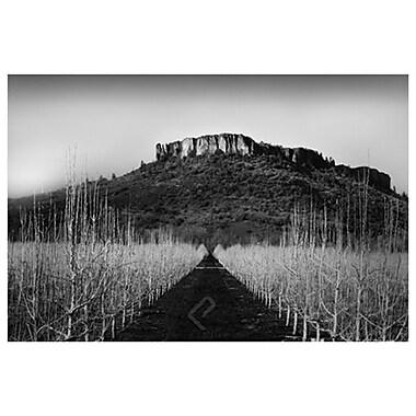 Plateau de pierre et champ de Settle, toile, 24 x 36 po