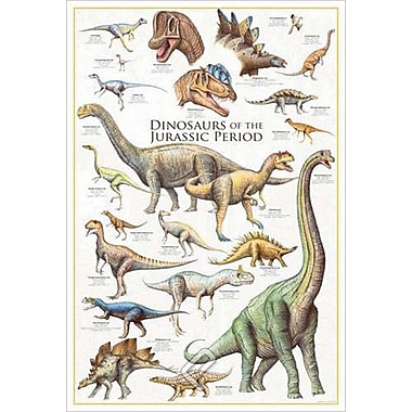Dinosaurs Jurassic Period, Stretched Canvas, 24