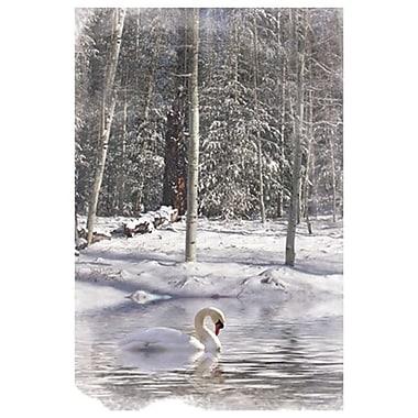 Snow White de Laird, toile, 24 x 36 po