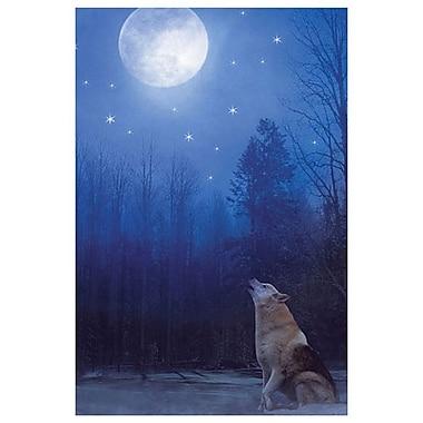 Loup solitaire de Laird, toile, 24 x 36 po