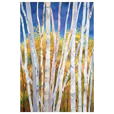 Serene White Birches by Pitts, Canvas, 24