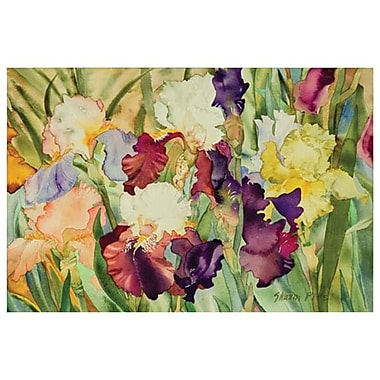 Elegant Irises by Pitts, Canvas, 24