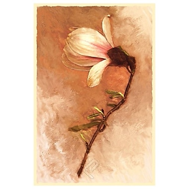 Magnolia and Cream I by Sutton, Canvas, 24