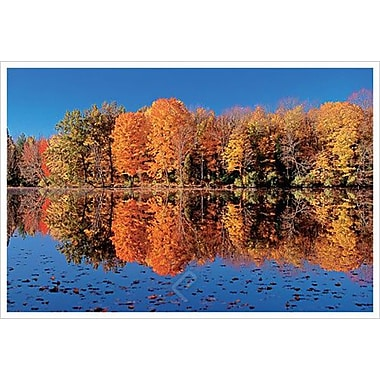Fall Scene In Ohio 11 by Sellers, Canvas, 24