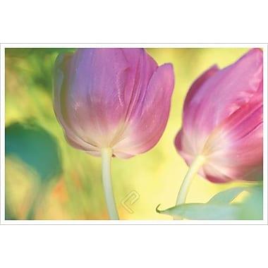 Tourbillon de tulipes par Connolly, toile, 24 x 36 po