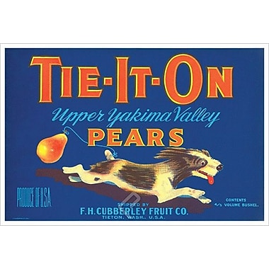 Tie-It-On Upper Yakima Pears, Stretched Canvas, 24