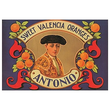 Antonio Sweet Valencia Oranges, Stretched Canvas, 24