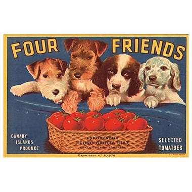 Four Friends Selected Tomatoes, Stretched Canvas, 24