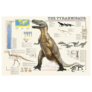 Tyrannosaurus, Stretched Canvas, 24