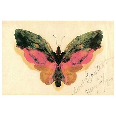 Butterfly by Bierstadt, Canvas, 24