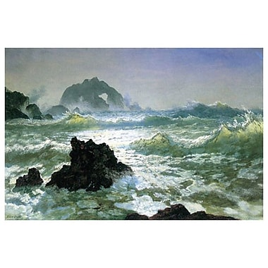 Seal Rock by Bierstadt, Canvas, 24
