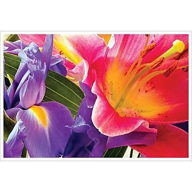 Conversation de fleurs de Davis, toile, 24 x 36 po