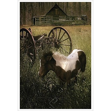 Le poney et le chariot de Hunziker, toile de 24 x 36 po