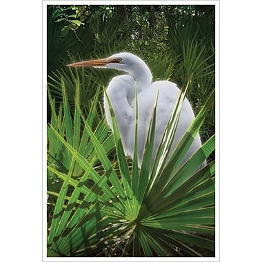 Palmetto Egret by Hunziker, Canvas, 24