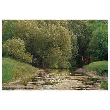 Tender Spring by Hunziker, Canvas, 24