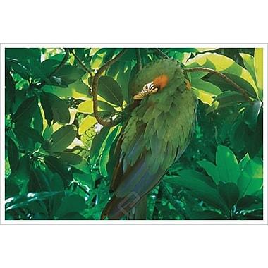 Camouflage vert de Hunziker, toile de 24 x 36 po
