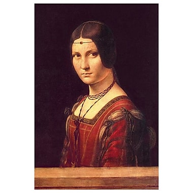 Unknown Woman by da Vinci, Canvas, 24