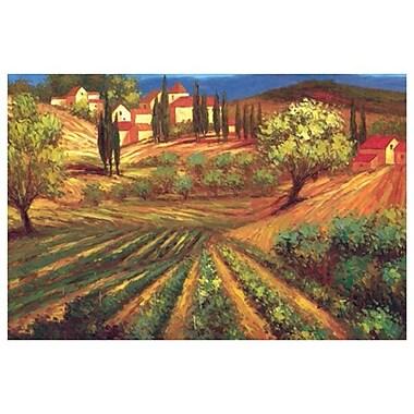Garden in Vinci by Per Mattin, Canvas, 24