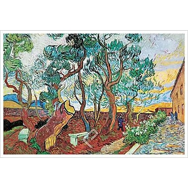 Garden Asylum by Van Gogh, Canvas, 24