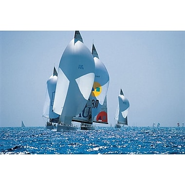 Sail Boat Race, Stretched Canvas, 24