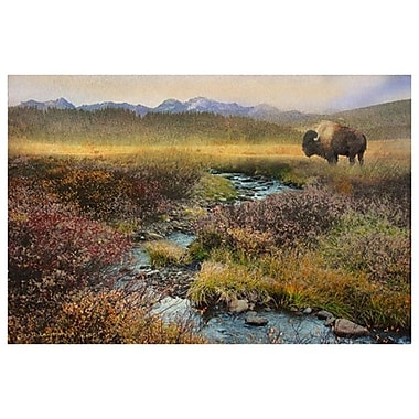 Bison and Creek by Vest, Canvas, 24