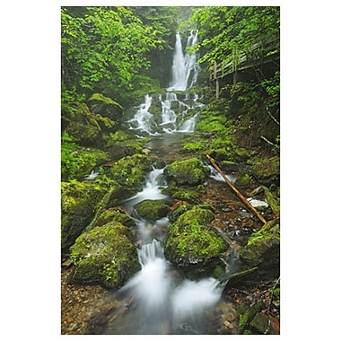 Dickson Falls 1 by Grandmaison, Canvas, 24