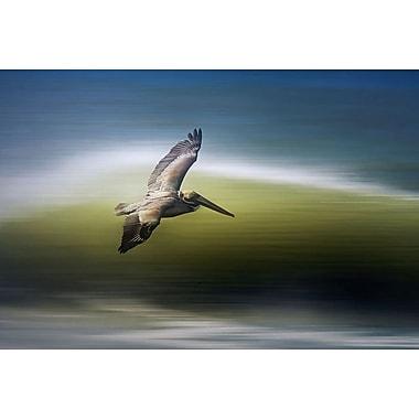Pélican en plein vol de Munch, 24 x 36 po