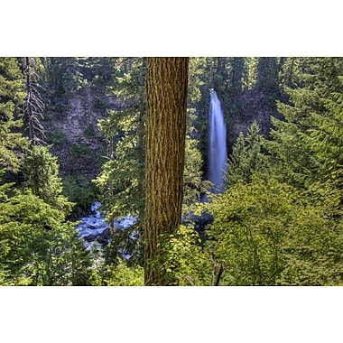 Mill Creek Falls by Polk, Landscape, Canvas, 24