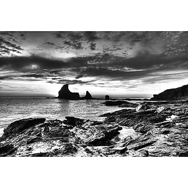 Black and White Rocky Coast by Nalbandian, Canvas, 24