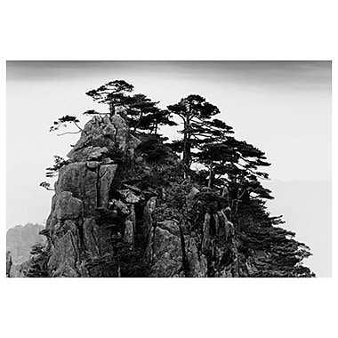 Pines Huangshan China by Stange, 24