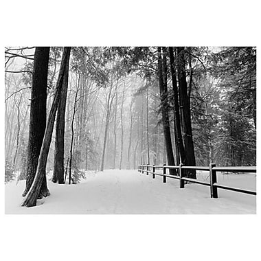 Winter Country Lane- Michigan, Stretched Canvas, 24