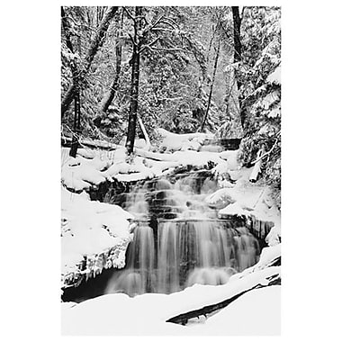 Country Stream in Winter-MI, Stretched Canvas, 24