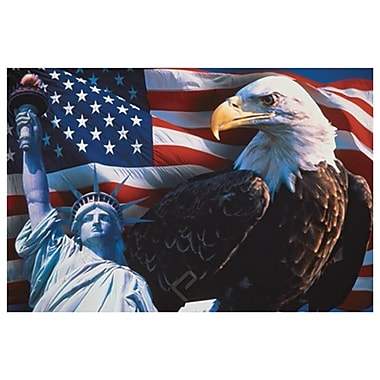 US Flag- Eagle- Statue Liberty, Stretched Canvas, 24