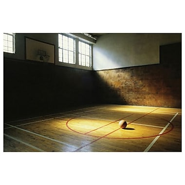 Basketball Court, Stretched Canvas, 24