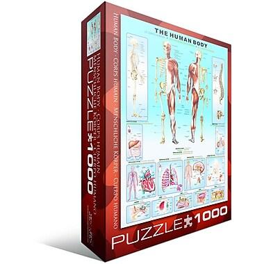 Human Body Puzzle, 1000 Pieces