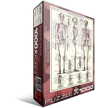 Skeletal System (Ch) Puzzle, 1000 Pieces